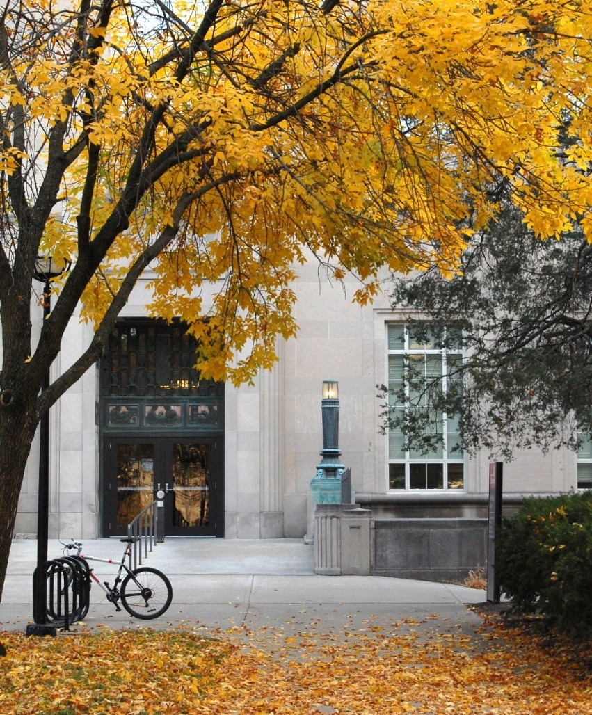 Blegan Library in the fall, surrounded by golden leaves.